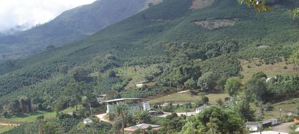 Detran Alto Jequitibá - Mg